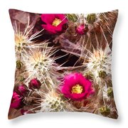 Prickley Cactus Plants Throw Pillow