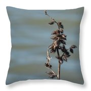 Prickly By Nature Throw Pillow