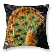 Prickly Cactus Leaf Green Brown Plant Fine Art Photography Print  Throw Pillow