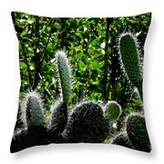 Prickly Juans Throw Pillow