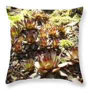 Prickly Lilies Throw Pillow