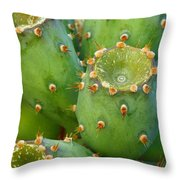 Prickly Pear Cactus 2am-105306 Throw Pillow