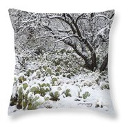 Prickly Pear Cactus And Mesquite Tree Throw Pillow