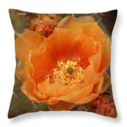 Prickly Pear Cactus Blooming In The Sandia Foothills Throw Pillow