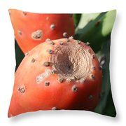 Prickly Pear Cactus Fruit - Indian Fig Throw Pillow