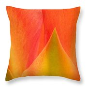 Prickly Pear Flower Petals Opuntia Lindheimeni In Texas Throw Pillow