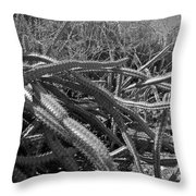 Prickly Perfection Throw Pillow