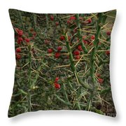 Prickly Pete Cactus Throw Pillow