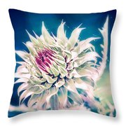 Prickly Thistle Bloom Throw Pillow