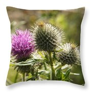 Prickly Youth Throw Pillow