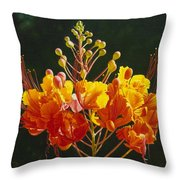 Pride Of Barbados Throw Pillow