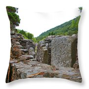 Priest's House Throw Pillow