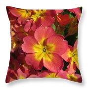Primrose Flowers Throw Pillow