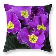 Primrose Purple Throw Pillow