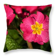 Primulas Throw Pillow