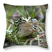 Prince For A Kiss Throw Pillow