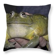 Prince Frog Hands Throw Pillow