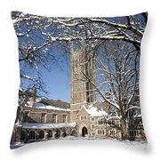 Princeton Wonderland Throw Pillow
