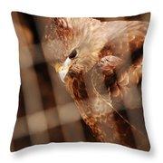 Prisoner Hawk  Throw Pillow
