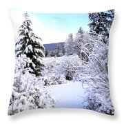 Pristine Winter Trail Throw Pillow