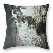 Probatic Pool, Jerusalem, 1844 Throw Pillow