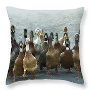 Professional Ducks 2 Throw Pillow