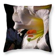 Profile Lilium Regale Throw Pillow