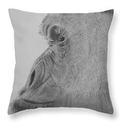 profile of mr G. Throw Pillow