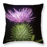 Profile Of Pruple Thistle Throw Pillow