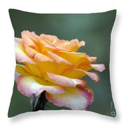 Profile View Yellow And Pink Rose Throw Pillow