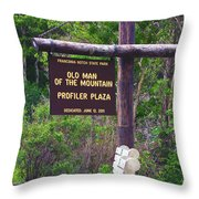 Profiler Plaza Post Throw Pillow