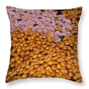 Profusion In Yellows Pinks And Oranges Throw Pillow