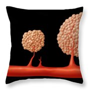 Progression Of Angiogenesis Throw Pillow