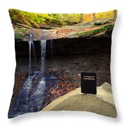 Proof Of God's Existence Throw Pillow