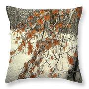 Prospect Park Winter Scene Throw Pillow