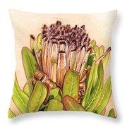 Protea In Autumn Throw Pillow