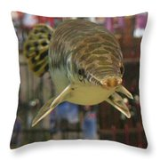 Protected Gar Throw Pillow