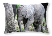 Protected Passage Throw Pillow