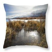 Protected Wetlands Throw Pillow
