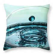 Protecting The Crown Throw Pillow by Vickie Szumigala