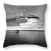 Protecting The Jewels Throw Pillow