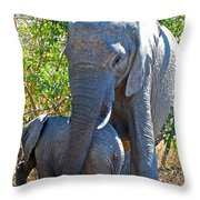 Protective Mother Elephant In Kruger National Park-south Africa Throw Pillow
