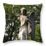 Protector Of The Yard Throw Pillow