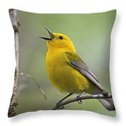 Prothonotary Wabler Throw Pillow
