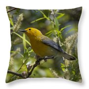 Prothonotary Warbler Dsb220 Throw Pillow