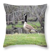 Proud Goose Throw Pillow