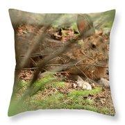 Proud Hare Throw Pillow