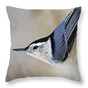 Proud Nuthatch... Throw Pillow