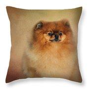 Proud Pomeranian Throw Pillow