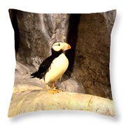 Proud Puffin Throw Pillow